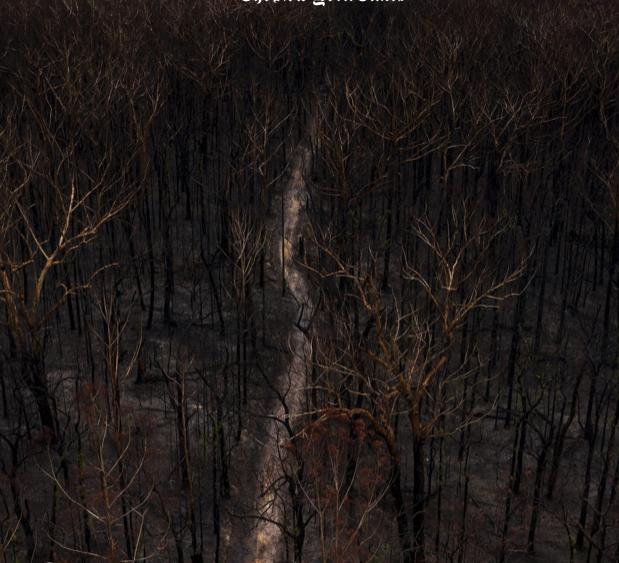 Screenshot 2020-02-24 at 18.13.11